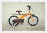 Qualität scherzt Fahrrad, Kind-Fahrrad