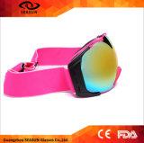 De in het groot Glazen van de Beschermende brillen van de Ski van de Apparatuur van de Sport van Beschermende brillen Snowboarding Grappige