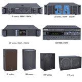 Amplificador audio de la potencia extrema estándar sana profesional