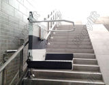 Vector de elevación casero de interior de la escalera de la silla de la venta caliente para la venta