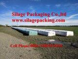 Película do envoltório da bala, largura 250mm 500mm, comprimento 1800m de 750mm, 1500m