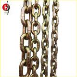 Ampiamente Using Color Glav Alloy Forged Steel Chain per Chain Block