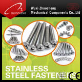 En acier inoxydable 304/SS316/SS306 toutes les tailles de vis