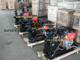 Auto di serie dello ZW che innesca pompa diesel