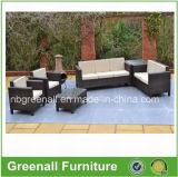 Importação ajustada da mobília do jardim do sofá novo do projeto