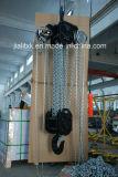 Cb-B Hijstoestel van de Keten van 15 Ton het Hand met Ce GS
