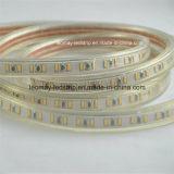 120 éclairage de bande à haute tension de DEL IP67 SMD3014 DEL