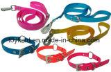 Approvisionnement d'animal familier de collier de crabot de chat de laisse de fil de produit d'animal familier