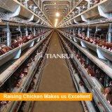 Ячеистая сеть Tianrui гальванизированная конструкцией клетка цыпленка рамки h рамки