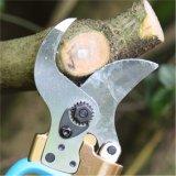 La frutta elettrica si ramifica forbici che potano le cesoie