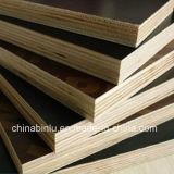 El contrachapado de madera/ Film enfrenta la construcción de contrachapado de madera contrachapada /