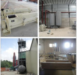 El contrachapado plena Producion Line/Línea de producción de partículas/caliente de la máquina de prensa