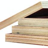 건축재료, 포플라 또는 박달나무 또는 경재 필름은 합판을 직면했다
