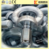 Produktions-und Verkaufs-Kohlenstoffstahl-Ringbolzen DIN580 M42