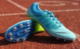 La ejecución de Campo de Cricket de calzado de deporte del Béisbol de las carreras de Trail Spike zapatos (134)