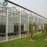 Оцинкованной стали структуры сельского хозяйства стекло гидропоники парниковых