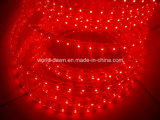 127/di indicatore luminoso della corda di 220V SMD3528 LED (HVSMD-3528-60)