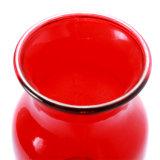 Vaso di vetro medio rosso di stile di superficie regolare