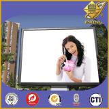 Strato antipolvere ed impermeabile del PVC di Tansparent per la pubblicità della scheda