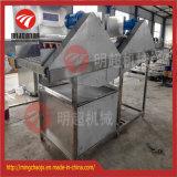Wasmachine van de Rol van de Borstel van de sinaasappel/van de Mango de de Parallelle en Apparatuur van de Was van het Fruit