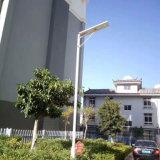30W неразъемное/интегрировало светильник датчика движения улицы сада солнечных продуктов напольный СИД