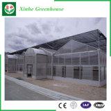 De Groene Huizen van het Blad van het Polycarbonaat van de Tunnel van de tuin/van de Landbouw voor het Groeien van de Groente/van de Bloem
