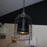 Lamp van de Tegenhanger van de Kooi van het Staal van Satinless de Zwarte voor het Project van het Hotel