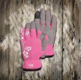 Дешевая Перчатк-Перчатк-Работая Перчатк-Защищенная Перчатк-Безопасность Перчатк-Трудится перчатка