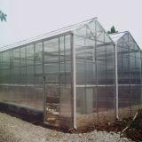 De commerciële LandbouwSerre van het Glas