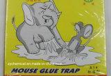 스티키 쥐 접착제는 마우스 접착제 설치류 접착제 널을 덫을 놓는다