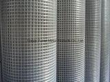 Galvano galvanisierte geschweißten Maschendraht, galvanisierten Eisen geschweißten Maschendraht-, galvanisierten und Kurbelgehäuse-Belüftung beschichtetensechseckigen Maschendraht