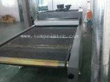 TM-UV10m Machine van het Effect van de Sneeuwvlok de UV Drogende
