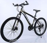 中国のバイクの工場卸売のマウンテンバイク/山の自転車
