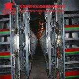 Kooi van het Fokken van de Kip van de Baby van het Ontwerp van Jinfeng de volledig-Automatische Hete Gegalvaniseerde