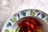 De populaire Ceramische Druk van Nice van de Plaat van het Diner