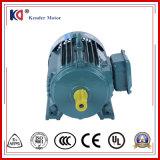 Serie Yx3 motore elettrico di CA di induzione di 3 fasi con il ciclo riduttore
