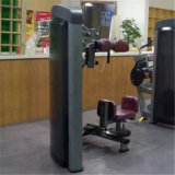筋肉胴機械回転機械胴の回転Xh904