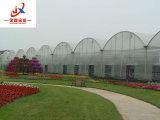 Les Verts la plantation en tunnel Multi-Span expérimentés et élégante maison verte