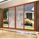 Porte décorative en aluminium de qualité supérieure (FT-D126)