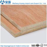 AA/AA Grade Bintangor contreplaqué de bois de placage de marché de l'Afrique