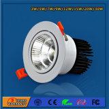 中国の高い発電のEnergryのセービングLEDの点ライト
