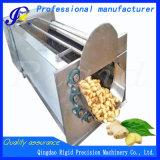 Limpeza da batata do rolo da escova e máquina de casca