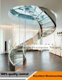 緩和されたガラスおよびステンレス鋼Handrialが付いている商業建物のステアケース