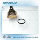 De professionele Magneet van het Neodymium NdFeB van de Ring Permanente voor Generator