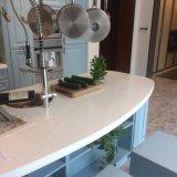 Projeto modular luxuoso clássico da cozinha de Welbom