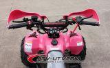 安い価格OEMのクォードは販売のためのATVを自転車に乗る