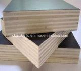 Núcleo de madera de buena calidad de película concreta ante la madera contrachapada