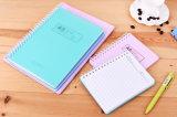 Organizador lindo/planificador/libreta de los cuadernos espirales