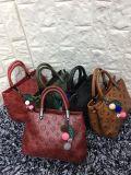 De Ontwerper van Nice van de manier de Zak van Dame Handbaghot Sell Casual Bag Bevordering (WDL0104)