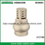 Cer zugelassenes Qualitätsunteres Messingventil (AV-CV-5006)